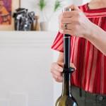 Conservador para vino ZZYSH uso sencillo