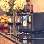 Enfriador de vino OW002 bar