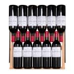 Vinoteca VInobox 168 botellas 168GC 2T Negro detalle colocación botellas