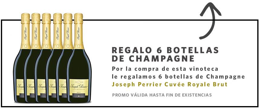 regalo vinobox champagne
