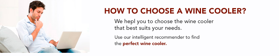 step by step choose a wine cooler